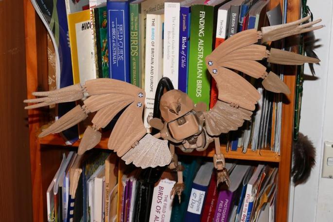 eagle manikin in Australia